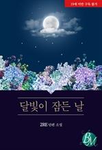 도서 이미지 - [BL] 달빛이 잠든 날