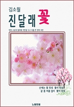 도서 이미지 - 김소월 진달래꽃