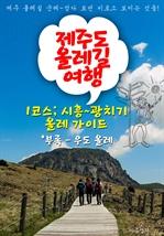 도서 이미지 - 제주 올레길 여행 ; 1코스 시흥~광치기 올레 가이드