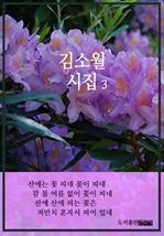 도서 이미지 - 김소월 시집 3