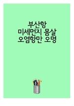 도서 이미지 - 부산항 미세먼지 몸살...오염항만 오명
