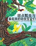 도서 이미지 - 점박이 무당벌레와 숨바꼭질 애벌레 - 斑点瓢虫与躲起来的幼虫宝宝们: 最好的数学原理童话