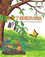도서 이미지 - 나비가 된 애벌레 - 成为了蝴蝶的幼虫