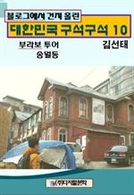 도서 이미지 - 블로그에서 건져 올린 대한민국 구석구석 10