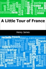 도서 이미지 - A Little Tour of France