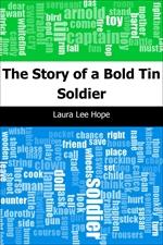 도서 이미지 - The Story of a Bold Tin Soldier