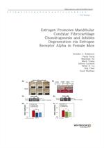 도서 이미지 - Estrogen Promotes Mandibular Condylar Fibrocartilage Chondrogenesis and Inhibits Degenerat