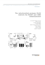 도서 이미지 - The mitochondrial protease HtrA2 restricts theee NLRP3 and AIM2 inflammasomes
