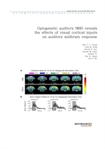 도서 이미지 - Optogenetic auditory fMRI reveals the effects of visual cortical inputs on auditory midbra