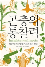 도서 이미지 - 곤충의 통찰력