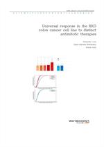 도서 이미지 - Universal response in the RKO colon cancer cell line to distinct antimitotic therapies