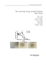 도서 이미지 - The Antiviral Drug Arbidol Inhibits Zika Virus