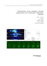 도서 이미지 - Biomimetic post-capillary venule expansions for leukocyte adhesion studies