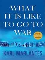 도서 이미지 - What It Is Like to Go to War