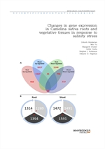도서 이미지 - Changes in gene expression in Camelina sativa roots and vegetative tissues in response to