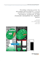 도서 이미지 - Providing reducing power by microalgal photosynthesis a novel perspective towards sustaina