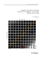 도서 이미지 - Imaging through scattering medium by adaptive non-linear digital processing