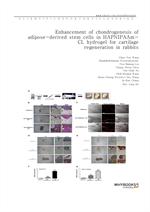 도서 이미지 - Enhancement of chondrogenesis of adipose-derived stem cells in HA-PNIPAAm-CL hydrogel for