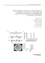 도서 이미지 - Transcriptional and post-transcriptional regulation of PenA β-lactamase in acquired Burkho