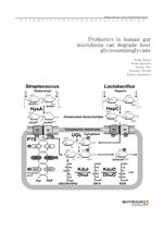 도서 이미지 - Probiotics in human gut microbiota can degrade host glycosaminoglycans