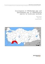 도서 이미지 - Investigation of Wolbachia spp. and Spiroplasma spp. in Phlebotomus species by molecular m