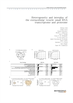 도서 이미지 - Heterogeneity and interplay of the extracellular vesicle small RNA transcriptome and prote