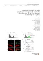 도서 이미지 - Globular-shaped variable lymphocyte receptors B antibody multimerized by a hydrophobic clu