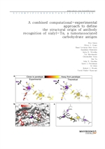 도서 이미지 - A combined computational-experimental approach to define the structural origin of antibody