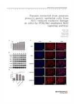 도서 이미지 - Paeonin extracted from potatoes protects gastric epithelial cells from H2O2-induced oxidat