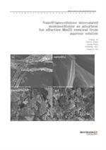 도서 이미지 - Nano@lignocellulose intercalated montmorillonite as adsorbent for effective Mn(II) removal