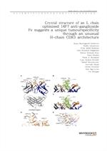 도서 이미지 - Crystal structure of an L chain optimised 14F7 anti-ganglioside Fv suggests a unique tumou