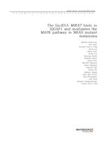 도서 이미지 - The lincRNA MIRAT binds to IQGAP1 and modulates the MAPK pathway in NRAS mutant melanoma