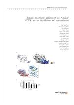 도서 이미지 - Small molecule activator of Nm23NDPK as an inhibitor of metastasis