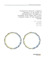 도서 이미지 - Comparison between complete genomes of an isolate of Pseudomonas syringae pv. actinidiae f