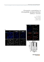 도서 이미지 - Chromatin remodeling in Drosophila preblastodermic embryo extract