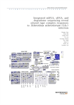 도서 이미지 - Integrated mRNA, sRNA, and degradome sequencing reveal oilseed rape complex responses to S