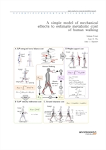 도서 이미지 - A simple model of mechanical effects to estimate metabolic cost of human walking