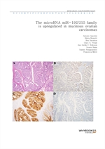 도서 이미지 - The microRNA miR-192215 family is upregulated in mucinous ovarian carcinomas
