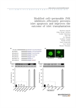 도서 이미지 - Modified cell-permeable JNK inhibitors efficiently prevents islet apoptosis and improves t