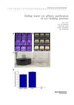 도서 이미지 - Falling water ice affinity purification of ice-binding proteins