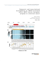 도서 이미지 - Epigenetic and transcriptional dysregulation of VWA2 associated with a MYC-driven oncogeni