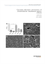 도서 이미지 - Curcumin alleviates persistence of Acinetobacter baumannii against colistin
