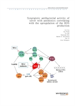 도서 이미지 - Synergistic antibacterial activity of silver with antibiotics correlating with the upregul