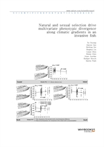 도서 이미지 - Natural and sexual selection drive multivariate phenotypic divergence along climatic gradi