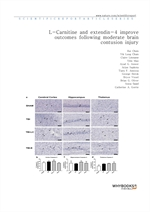 도서 이미지 - L-Carnitine and extendin-4 improve outcomes following moderate brain contusion injury