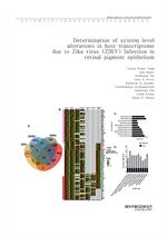 도서 이미지 - Determination of system level alterations in host transcriptome due to Zika virus (ZIKV) I