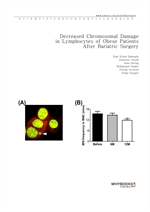 도서 이미지 - Decreased Chromosomal Damage in Lymphocytes of Obese Patients After Bariatric Surgery