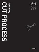 도서 이미지 - 感性CUT PROCESS