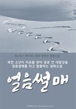 도서 이미지 - 얼음썰매 (블랙노블9)