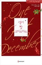 도서 이미지 - 섹시 핫 크리스마스 (티파니 라이스 저)
